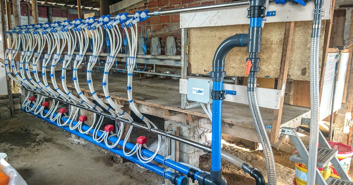Milking System at Elassona, Model V-Start no trap, 1×12/12.