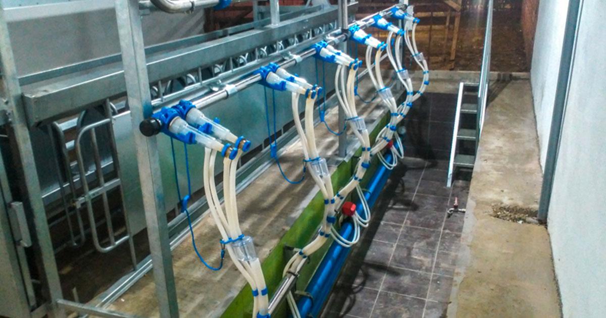 Milking System at Vathi Kilkis, Model V-3640, 1×12/6