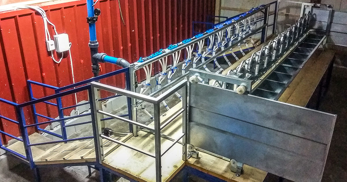 Milking System at Ardani Trikala, Model V-Start, 1×12/12