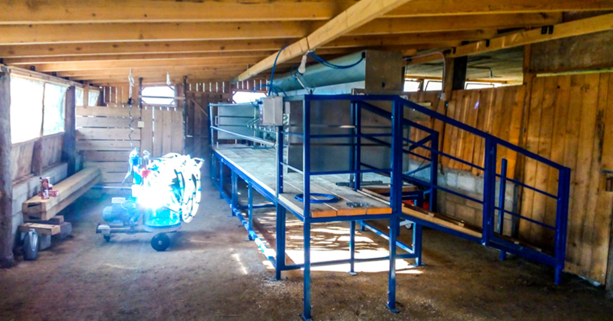 Milking System at Elati Trikala, with Loft and Steady Animal Trap, Automatic Feed System and  Spartan 4 Portable Milking System and Multiflexion