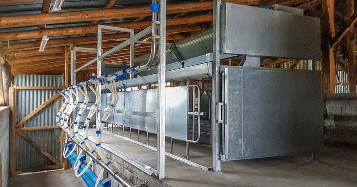 Milking System at Omolio Larisa, Model V-7670 with Multiflexion, Fast Exit Animal Trap Galvanized, 1×12/6